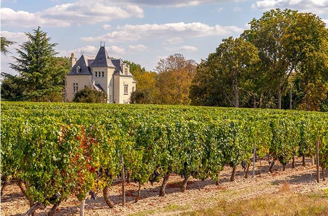 Chateau Moulin Neuf
